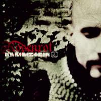 Pochette du single Rosenrot 2-Track