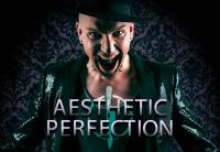 Aesthetic Perfection should open for Rammstein in 2019