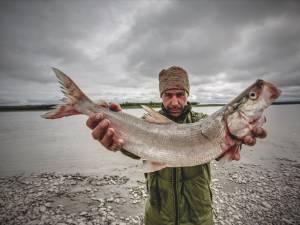 Photo of the book Yukon: Mein gehasster Freund